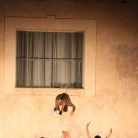Spectacle des élèves de la classe de 2nde spécialité arts du cirque - CHATELLERAULT